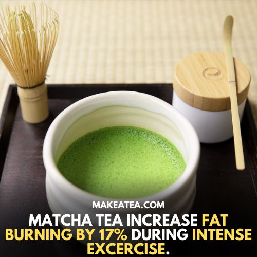 Matcha tea increase fat burning by 17% during intense exercise